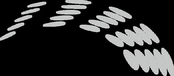 Athensoft Logo