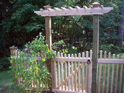Pergola Entry
