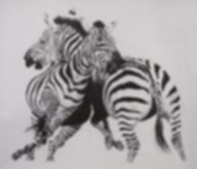 Smaller Zebras.jpg