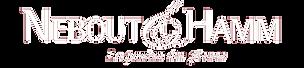 logo N&H BLANC copie.png