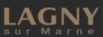 logo-lsm.jpg