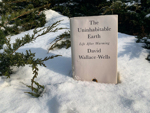 What We're Reading: The Uninhabitable Earth Life After Warming