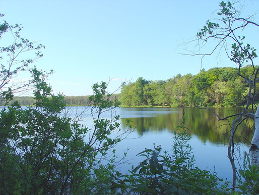 Improving the Health of the Chebacco Lake Watershed and Alewife Brook