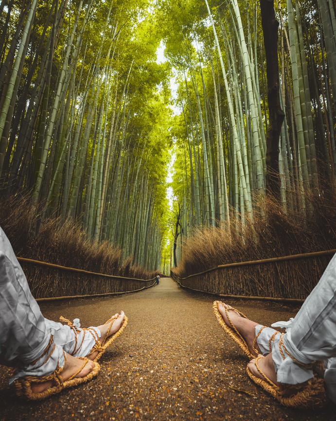 sole-sights-bamboo-kyoto.jpg