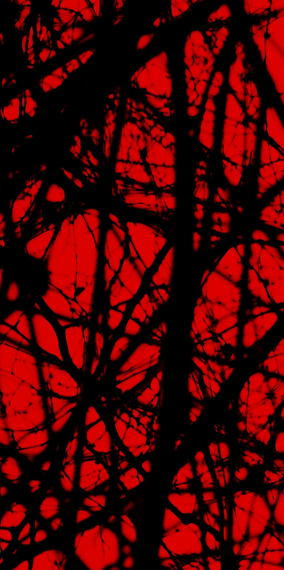 02 redstudy2, fotografia digital, 30x60,