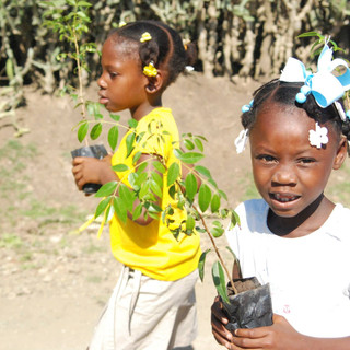 Planting trees for Earth Day