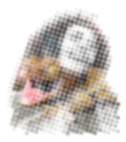 bob hintergrund 1.jpg