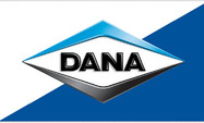 Dana_construction.jpg