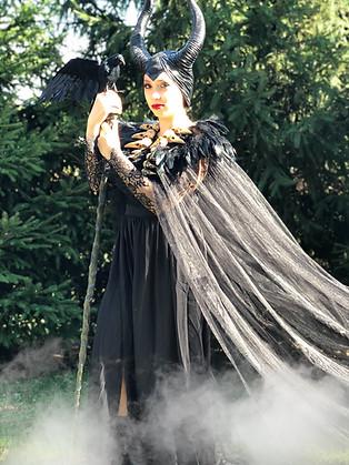 Evil Fariy Maleficent