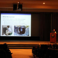 Stacey Tabellario presents about Sloth Bears