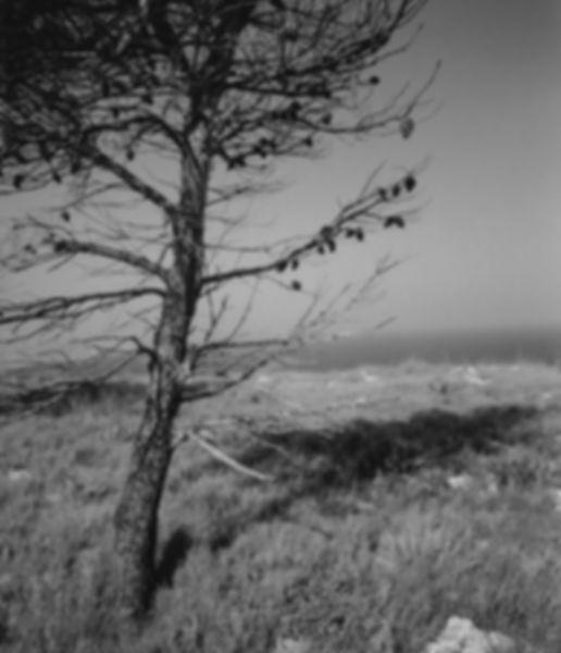 de finibus terræ paesaggio con mare marina costa del salento puglia