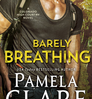 Belaying and Bonking - Barely Breathing by Pamela Claire