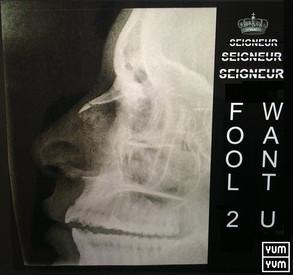 SEIGNEUR - Fool 2 Want U (single)