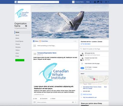 Canadian Whale Institute Logo Redesign