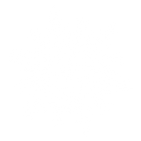 Snowflake2_edited.png