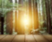Redwood Capital - Misión y Valores