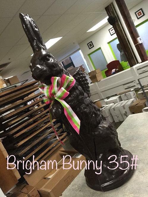 Brigham Bunny