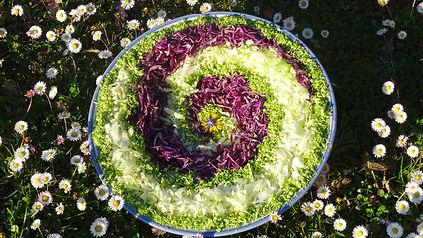 sirotelavie.com, repas vegetarien, produits bio, cuisine vivante, sur place, à emporter, stages, evenements