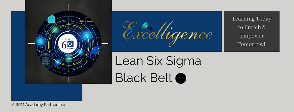 Lean Six Sigma Black Belt 3.png