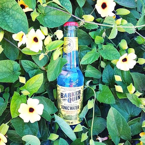 prémium gin