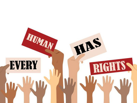 Human Rights And  The Constitution Of India