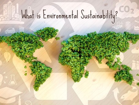 Social Justice and Environmental Sustainability