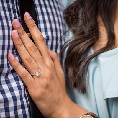 Sonal & Amol's Proposal/Engagement Shoot
