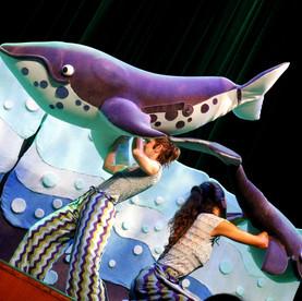 Circulo das Baleias 2.jpg