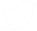 Twitter Marketing +Twitter Logo +Audience +Targeted Ads +Social Media +AdSearch Marketing