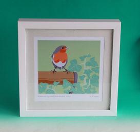 Robin Framed Print.JPG