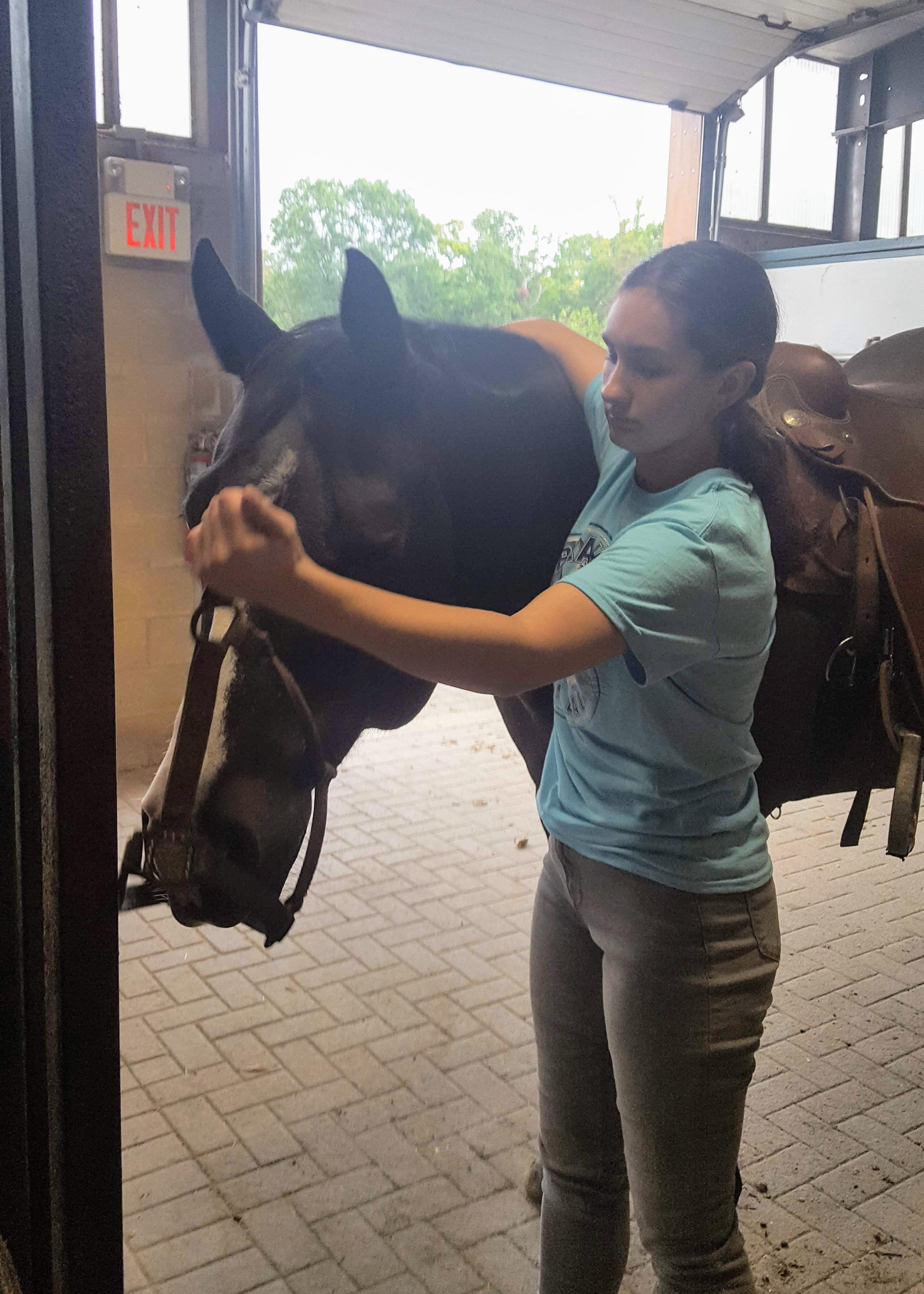 NJ Equestrian
