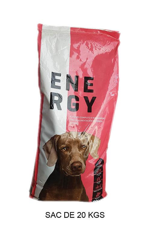ENERGY pour chien