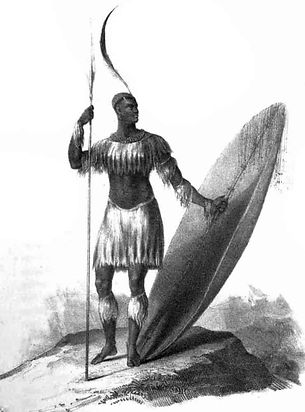 standard_compressed_KingShaka_1_.jpg