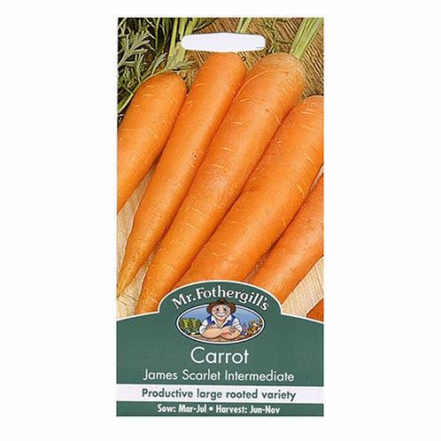 Carrot James Scarlet