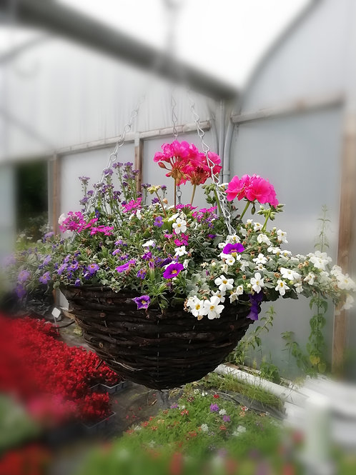 "Pretty pastel NEW 14"" hanging basket mauve/pink/white"