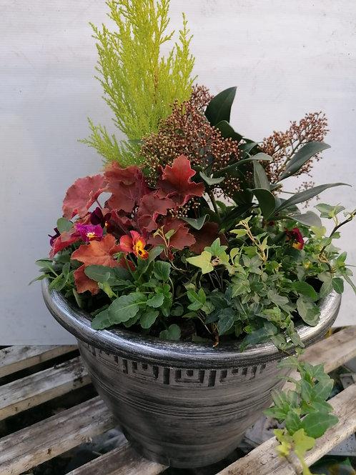35cm Planted Pot