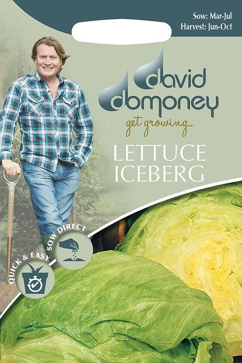 Iceberg lettuce seeds