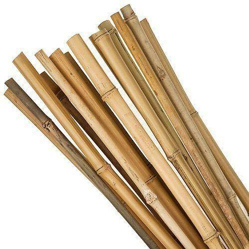 10 Bamboo canes 6ft