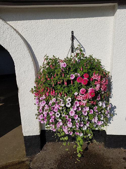 "Pretty pastel NEW 16"" hanging basket mauve/pink/white"