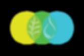 kathleen_kuhn_logo_design_web.png