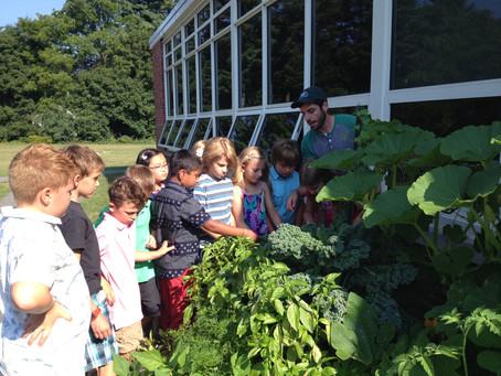 2015-2016: Grade 3 GreenCity Growers