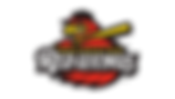 Rochester-Red-Wings-Logo.png