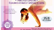 Práctica especial de equilibrios sobre los brazos y aperturas de caderas