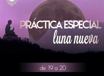 Práctica especial de luna nueva