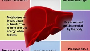 Why your liver matters.