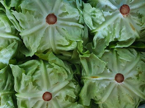 Kopfsalat grün (stück)