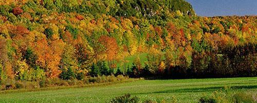 Fall Colours, Metcalf Rock | Rock Climbing Ontario | On The Rocks Climbing Guides