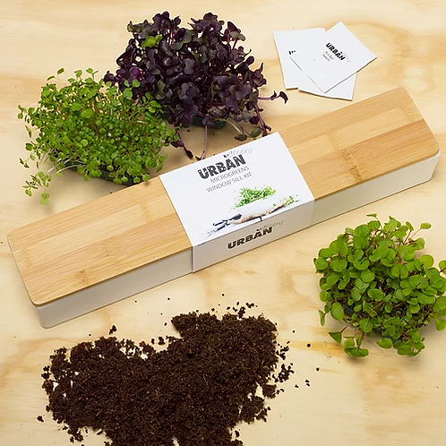 Urban Greens Windowsill Grow Kit - microgreens