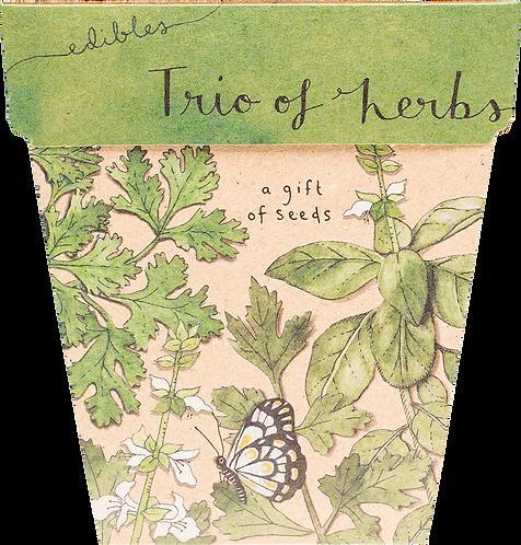 Sow n' Sow Gift of Seeds - Trio of Herbs