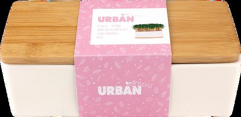 Urban Greens Mini Garden Sprouts Kit - Pink Kale